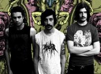 Turbowolf - Read And Write (Unsigned)